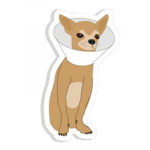 Autocollant Chihuahua en collerette