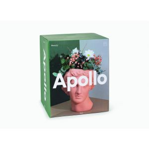 Apollo Vase Terracota