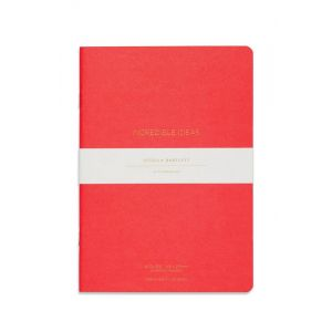 A5 Notebooks Set - Navy and Coral