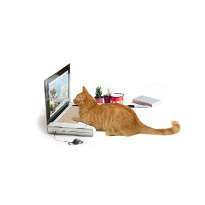Cat Laptop Scratch Pad