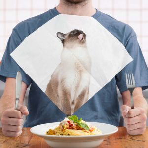 Cat Napkins Pack of 24