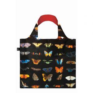 SAC Papillons et papillons de nuit