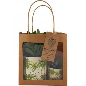 Giftbag collection - deux plantes grasses en pot avec imprimé de Jungle, 6cm et 9cm
