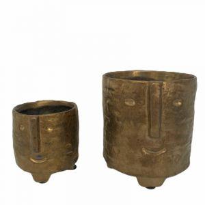 Pot à visage doré AW2020 - Moyen (livré sans plante)