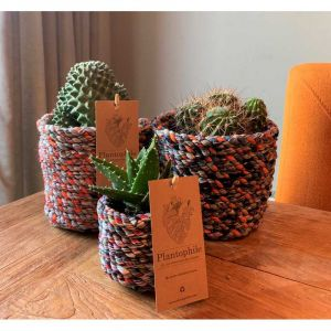 Cactus mix 12 cm in baskets made of recycled fabrics