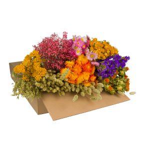 DIY bouquet fleurs sèchées dans un carton - multi