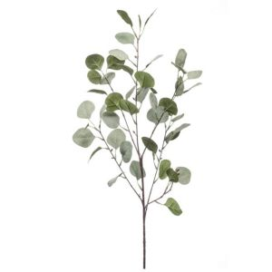 Eucalyptus spray x 4 vert/gris