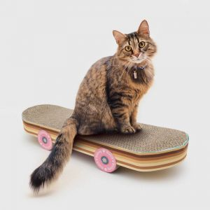 Grattoir pour chat skateboard